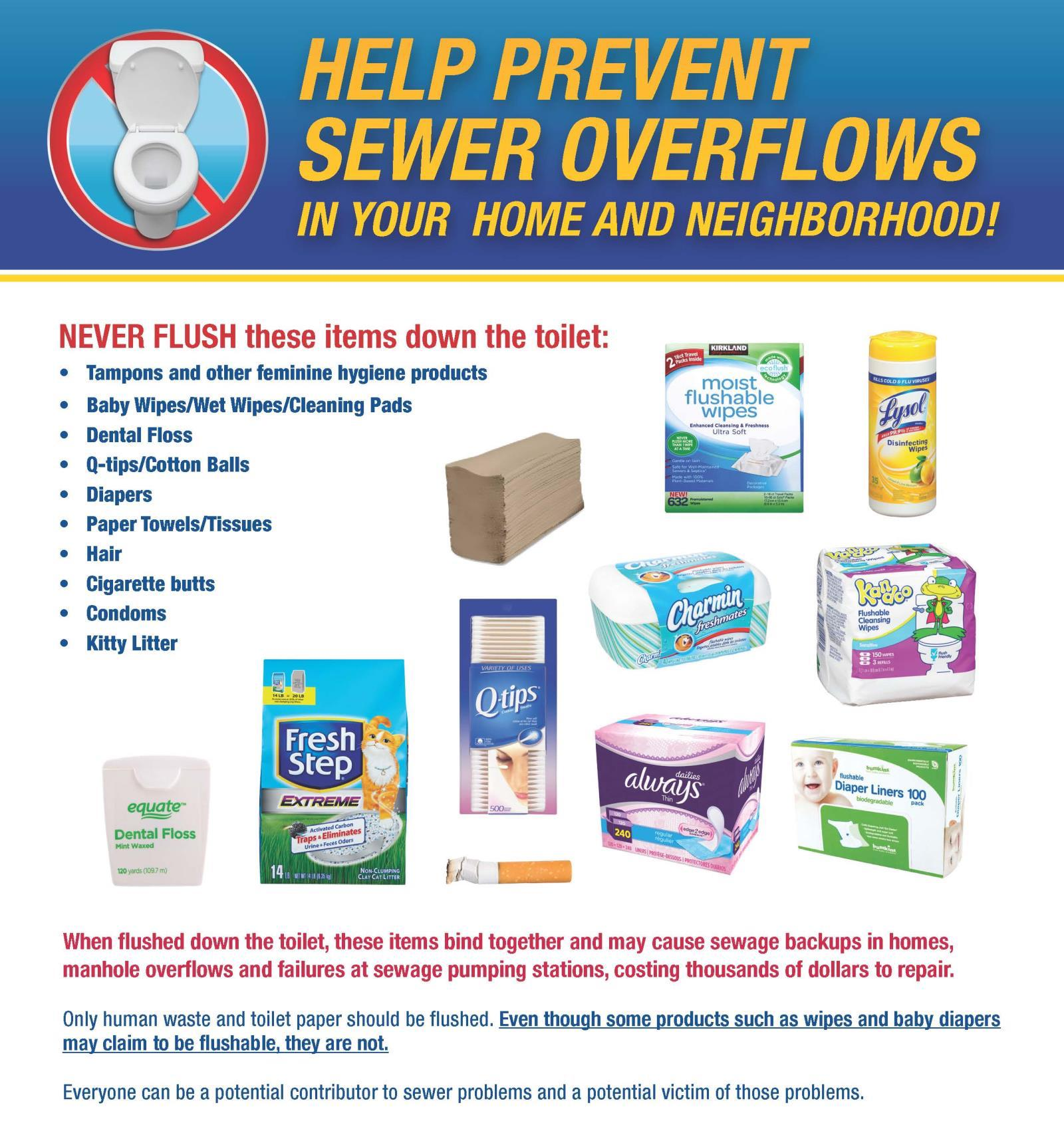 Prevent Sewer Overflow Flyer